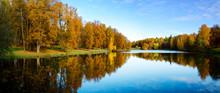 Sunny Beautiful Autumn Landsca...