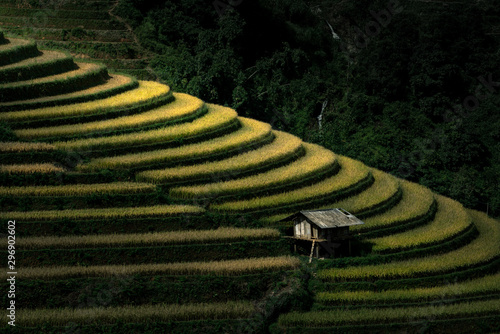 Foto auf Gartenposter Reisfelder Close up of a small hut in terraced rice field in Mu Cang Chai, Vietnam.