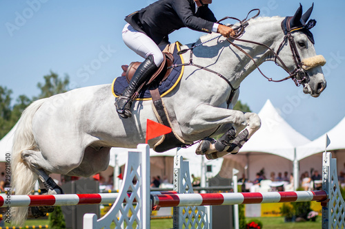 Poster Equitation Horse Jumping, Equestrian Sports, Show Jumping Competition.