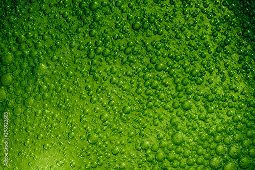 Fototapeta  Air bubbles in sparkling, green colored drink.