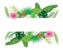 White Card With Many Leaves Vector Design