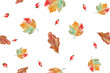 Leinwanddruck Bild watercolor bright autumn leaves seamless pattern on white background