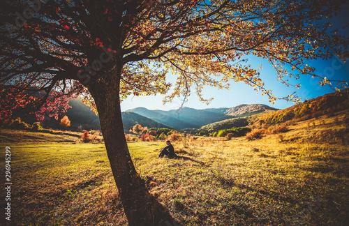 Foto auf Gartenposter Grau Verkehrs woman sitting under colorful tree in a beautiful autumn landscape