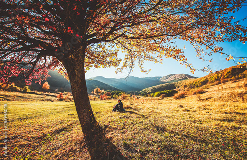Poster Printemps woman sitting under colorful tree in a beautiful autumn landscape