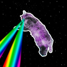 Pink Monster Cat Flies In Deep Space And Shoots Lasers From Eyes. Art Collage Concept Of 90s Or 80s