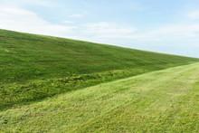 Frisch Gemähtes Gras Auf Dem Deich