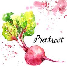 Beetroot, Radish, Purple Veget...