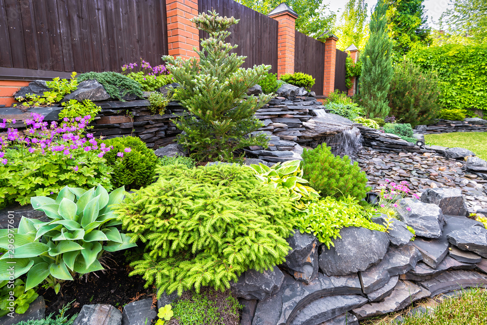 Fototapety, obrazy: Landscape design of home garden close-up. Detail of beautiful landscaped garden with green plants, flowers and small waterfall. Natural stone landscaping in backyard in summer.