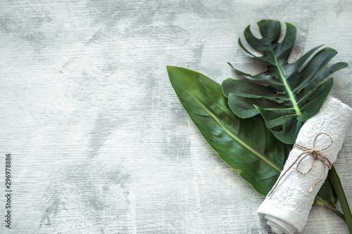 Montage in der Fensternische Blumen Spa composition with body care items on a light background.