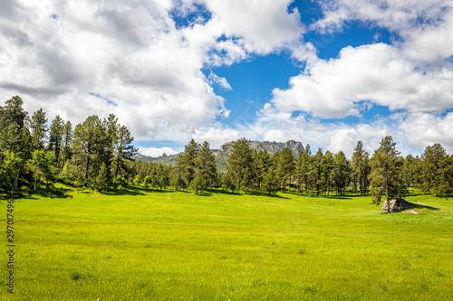 Foto op Plexiglas Weide, Moeras Black Elk Peak