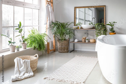 Vászonkép Stylish interior of bathroom with green houseplants
