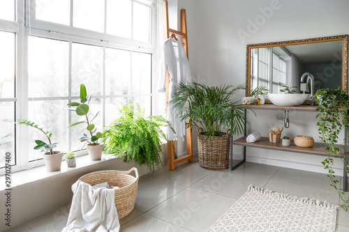 Stylish interior of bathroom with green houseplants Fototapet
