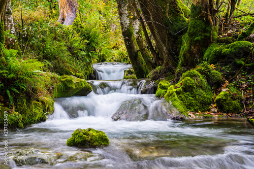 Germany, Magical little waterfall of a river flowing alongside green moss covere Fototapete