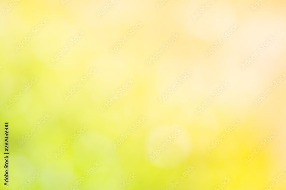 Fototapety, obrazy: Sunlight bokeh the green leaves of trees natural blurred