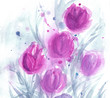 Pink tulips, leaf. Hand-drawn, watercolor splashes, blots . Spring. Still life. Women's Day. Floral background. Isolated on white. Design for cards, invitations and spring holidays. Floral composition