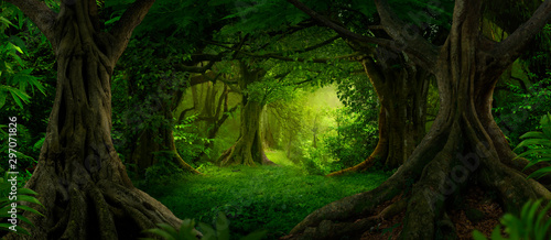 Spoed Foto op Canvas Weg in bos Deep tropical jungles of Southeast Asia in august
