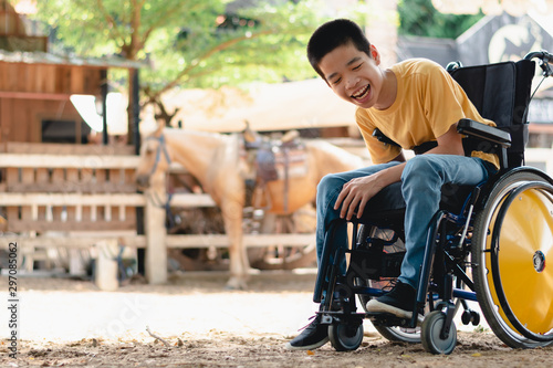 Disabled child on wheelchair is playing, learning and exercise in the outdoor horse farm background, Lifestyle of special child, Life in the education age of children,Happy disability kid concept Wallpaper Mural
