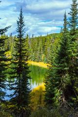 Fototapeta Rzeki i Jeziora Quiet lake surrounded by forest