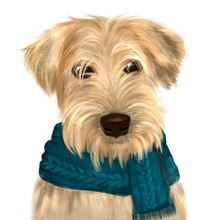 Soft Coated Wheaten Terrier With Long Haired Coat With Green Scarf. Digital Art Portrait Of Dog Terrier With Furry Muzzle, Hand Drawn Canine Purebred With Small Ears. Domestic Animal Cute Pedigree.
