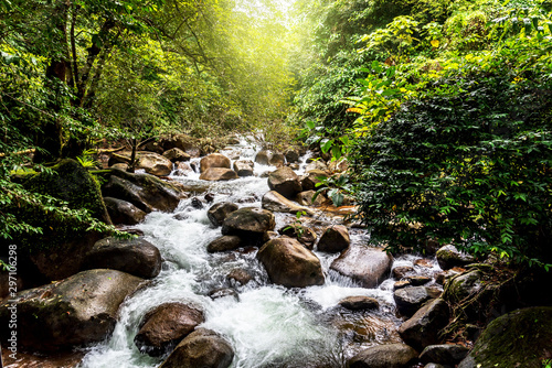Natural view waterfall Travel and relaxation in the Asian rainforest. - 297106298