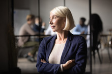 Thoughtful Old Businesswoman C...