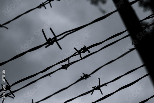 Photo  Barbed wire against the gray sky