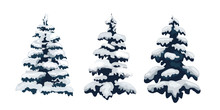 Snow Trees Set On Isolated Bac...