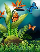 Nature Scene With Monarch Butt...