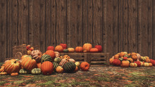 Autumn Pumpkins Laid Out On Wo...