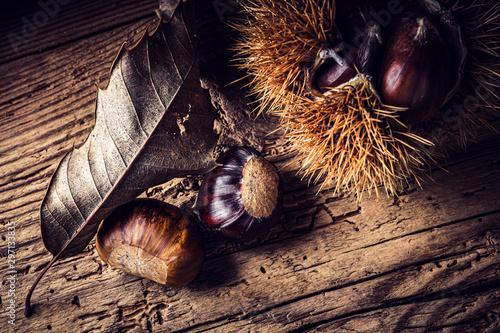 Fotomural  fresh chestnut harvest - still life