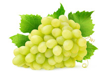 Isolated White Grape. Bunch Of Thompson Seedless Grapes With Leaves And Tendrils Isolated On White Background With Clipping Path