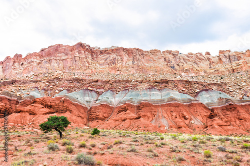 Red rock formations and one tree by layers on landscape cliff in summer in Fruita, Capitol Reef National Monument in Utah