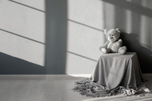 Black And White Photo. A Teddy...