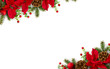 Leinwanddruck Bild - Christmas decoration. Frame of flowers of red poinsettia, branch christmas tree, ball, red berry on a white background with space for text. Top view, flat lay