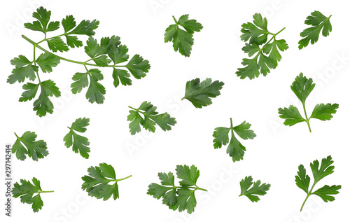Fotomural Green leaves of parsley isolated on white, top view