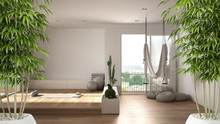 Zen Interior With Potted Bamboo Plant, Natural Interior Design Concept, Empty Yoga Studio, Minimal Open Space, Spatial Organization With Mats And Accessories, Ready For Yoga Practice
