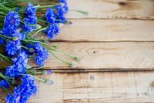 Seasonal Summer Flowers  - Blu...