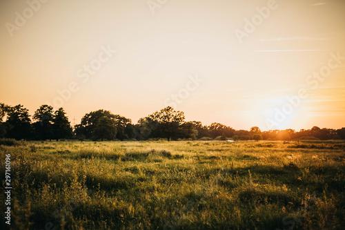 Spoed Fotobehang Baksteen Die Farbe des Sonnenuntergang #2