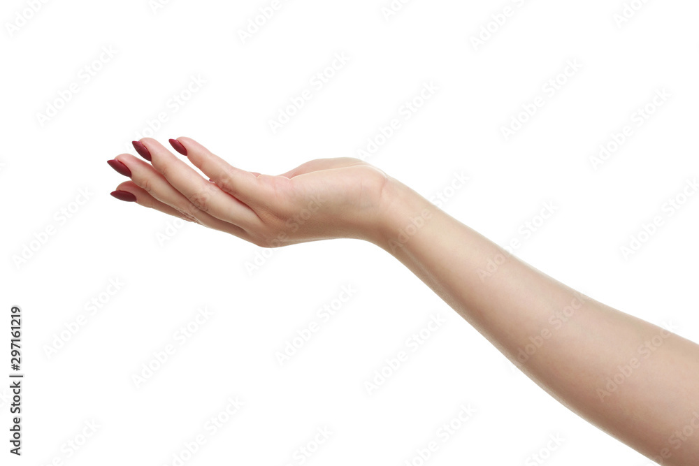 Fotografie, Tablou  Open a woman's hand, palm up isolated on white background.