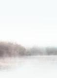 Dawn. Autumn foggy lake. Beauty nature background - 297179634