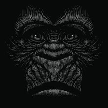 The Vector Logo A Monkey Or Gorilla Named King Kong For Tattoo Or T-shirt Design Or Outwear.  Cute Print Style A Monkey Or Gorilla Named King Kong Background. This Drawing Would Be Nice To Make.