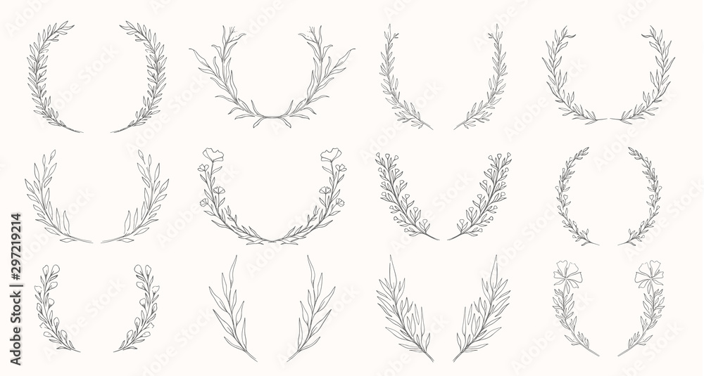 Fototapeta Plant nature wreath hand drawn set. Collection botanical element.Elegante vintage style.
