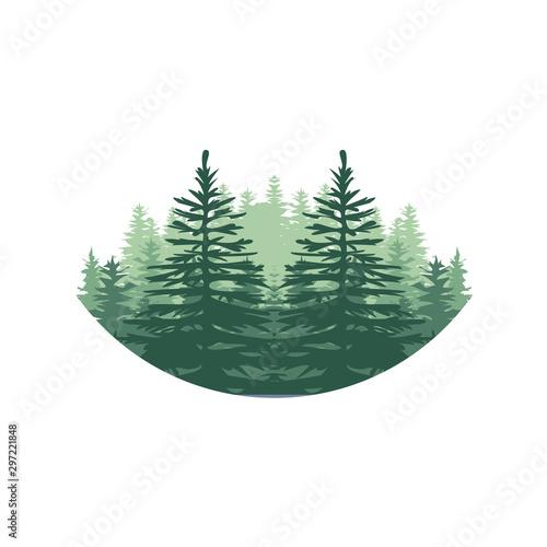 Fényképezés  Evergreen, Pines, Spruce, Cedar trees logo design