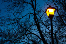 Street Lamp On The Background ...