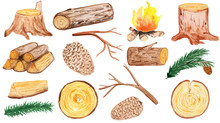 A Large Set Of Wooden Elements - Stump, Cones, Pine Branches, Firewood, Branches, Logs And Round Saw Cuts. Aqua Illustration For Prints, Design And Cards. Hike And Walks, Eco Style. Rustic