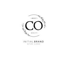 C O CO Beauty Vector Initial L...