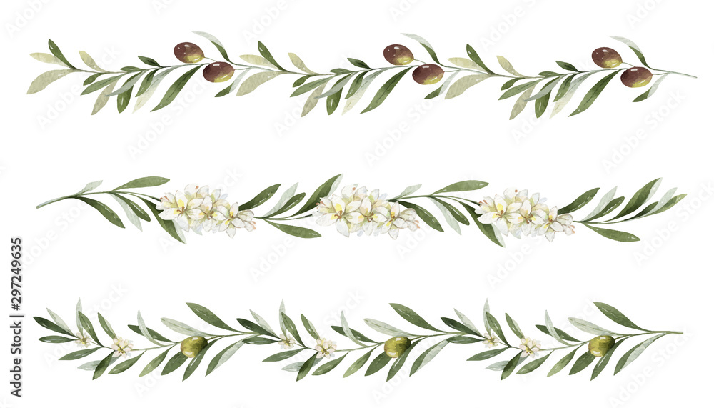 Fototapety, obrazy: Watercolor vector set of borders of olive branches and flowers.