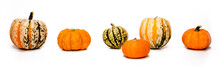 Panoramic Gourds And Pumpkins ...