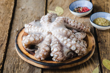 Raw Octopus Before Cooking With Spices