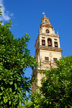 Cordoba Mosque Tower